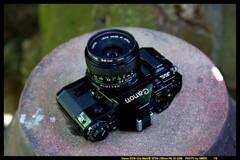 ひんでコレクション Canon A-1 ②