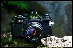 ひんでコレクション Canon EF ①