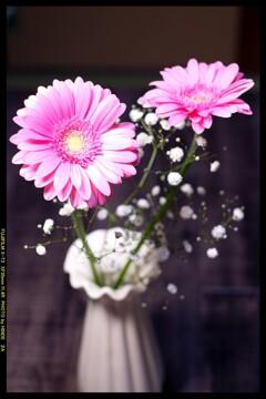 花言葉は「感謝」①