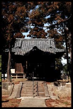 前橋の熊野神社境内