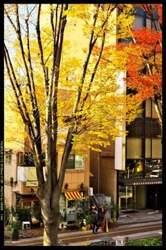前橋駅前散策と紅葉と⑮