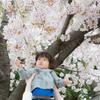 瞳に映る桜