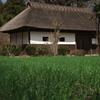 麦と長屋門