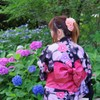 紫陽花祭り 3