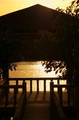 琵琶池の夕日