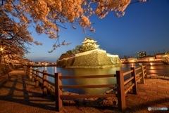岸和田城2