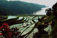 水のある風景 【海】 31