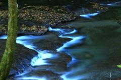 水のある風景 61