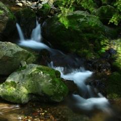 山深し谷川