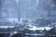 雪日の光景