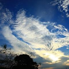 本日の異様な雲