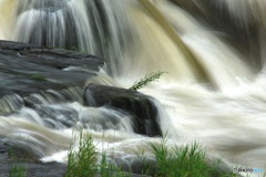 雨の日の滝