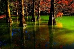 水のある風景 58