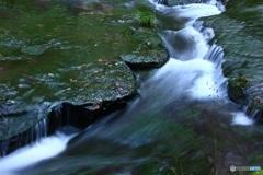 水の旅 【筑後川源流付近にて】