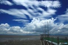 【夏雲】 マー坊 水郷柳川を行く