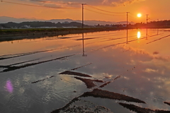 夕陽【田植え待ち】