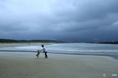 浜辺のダンス