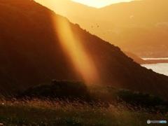 夕陽の光線