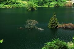 ・・湖面・・