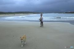 浜辺にて 愛犬