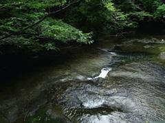 水のある風景 28【清流】