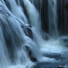 鯉の滝のぼり【小魚】
