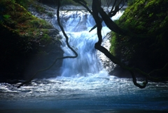 山奥で見つけた滝