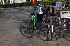 自転車の影.