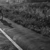 DSC04987. 御使いは自転車に乗って.
