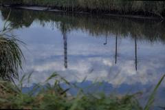 秋を映して川は流れる