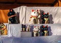 DSC05210-開店前の招き猫