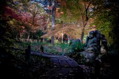 DSC01209. 名残の秋-5  紅葉の森の普賢菩薩jpg