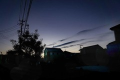 DSC00081-冬の朝