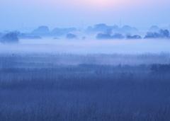 霧にしずむ