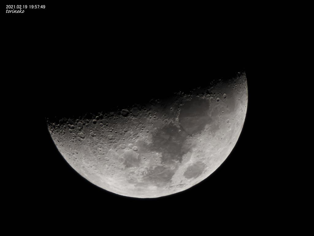 明日は上弦の半月