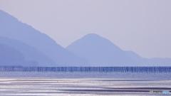 海苔の養殖の棒…?