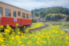春色の汽車5