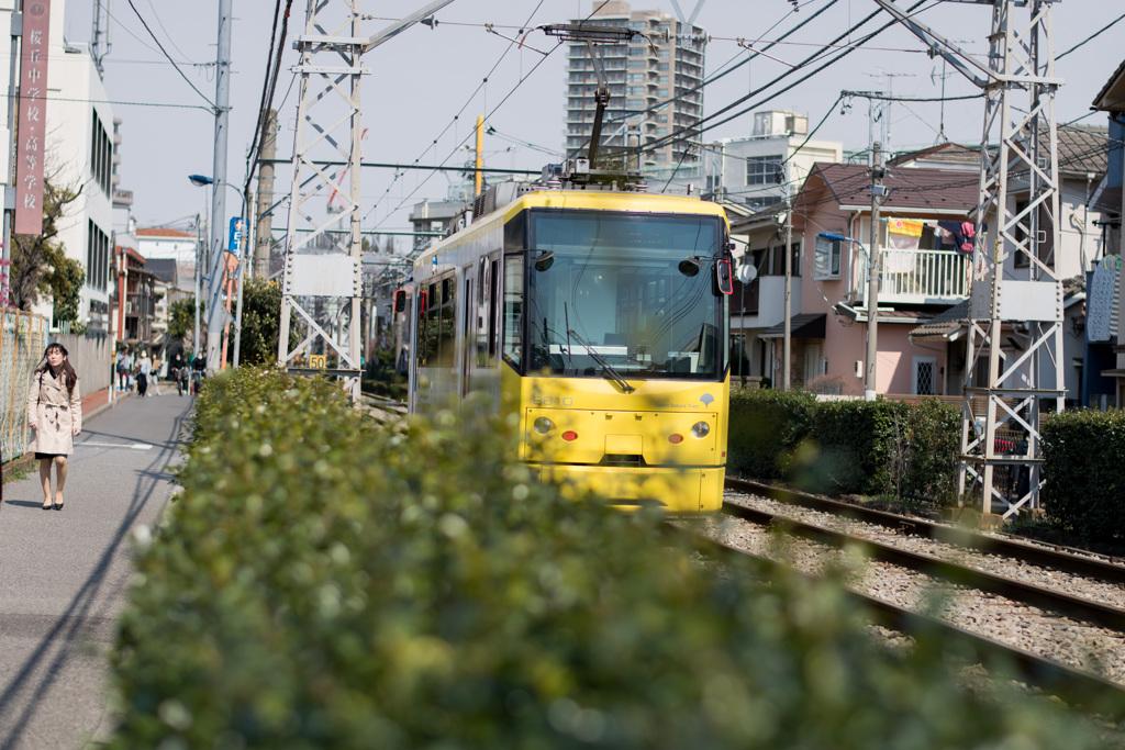 日常の路面電車