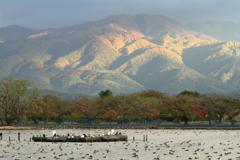 夕日の五頭山