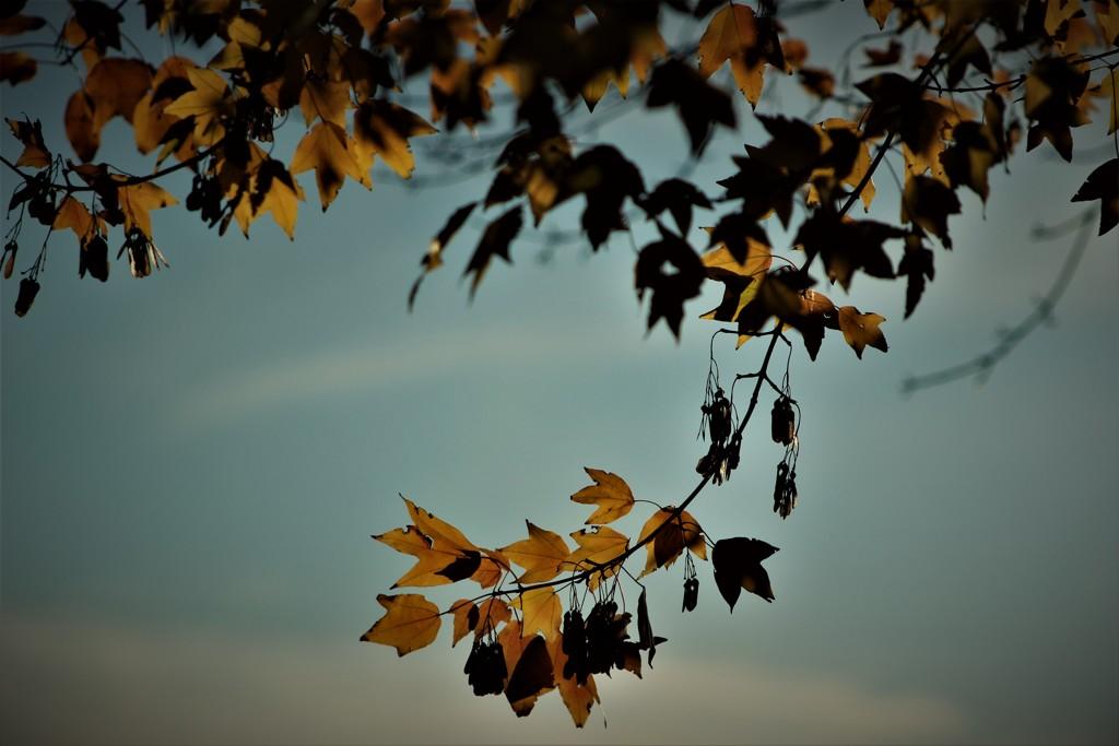 季節の終わり