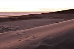 黄昏時の砂丘