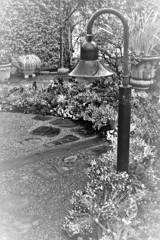 フラリエの庭 モノトーン