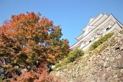 八幡城の秋 #4