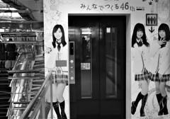 エレベーターの日