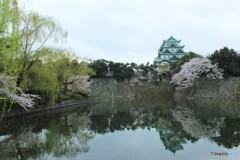名古屋城 春