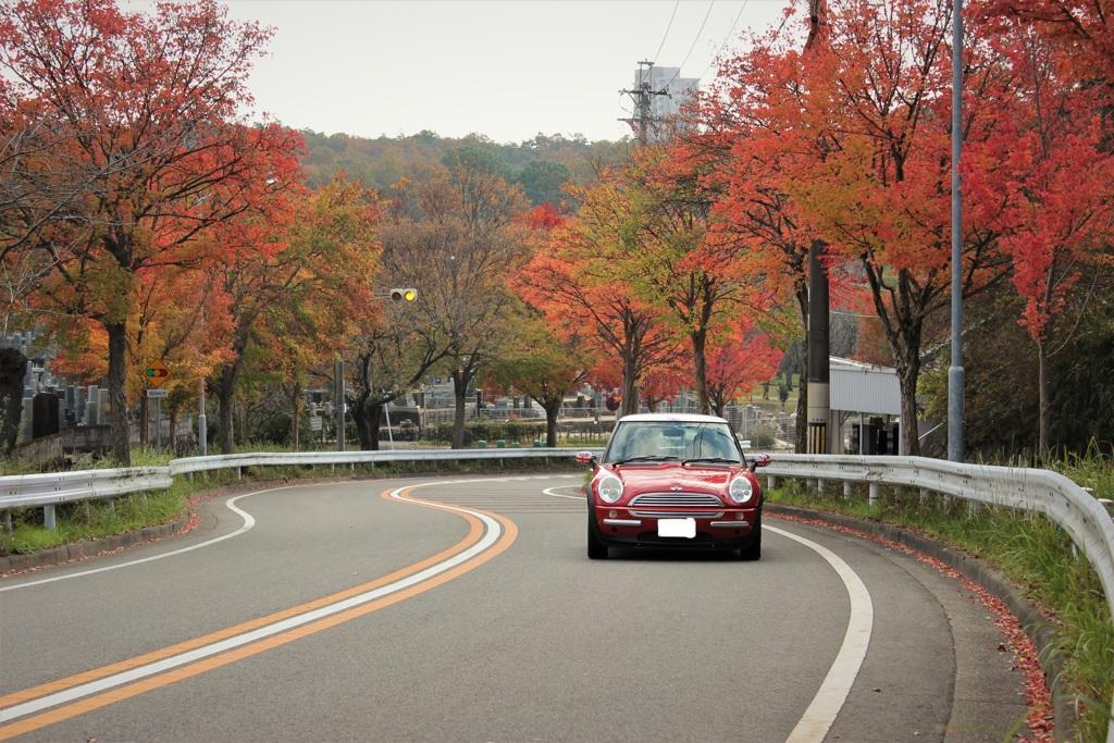 紅葉ロード