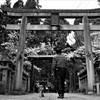 春のOF会名城公園