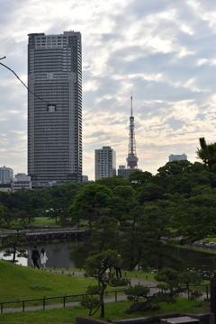 浜離宮から東京タワー