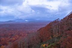 赤茶色の風景