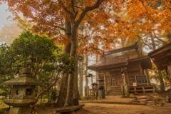 いつかの中尊寺